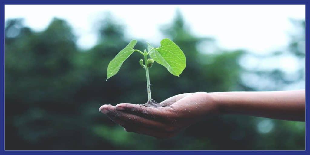 gaz vert renouvelable infos 2021 1